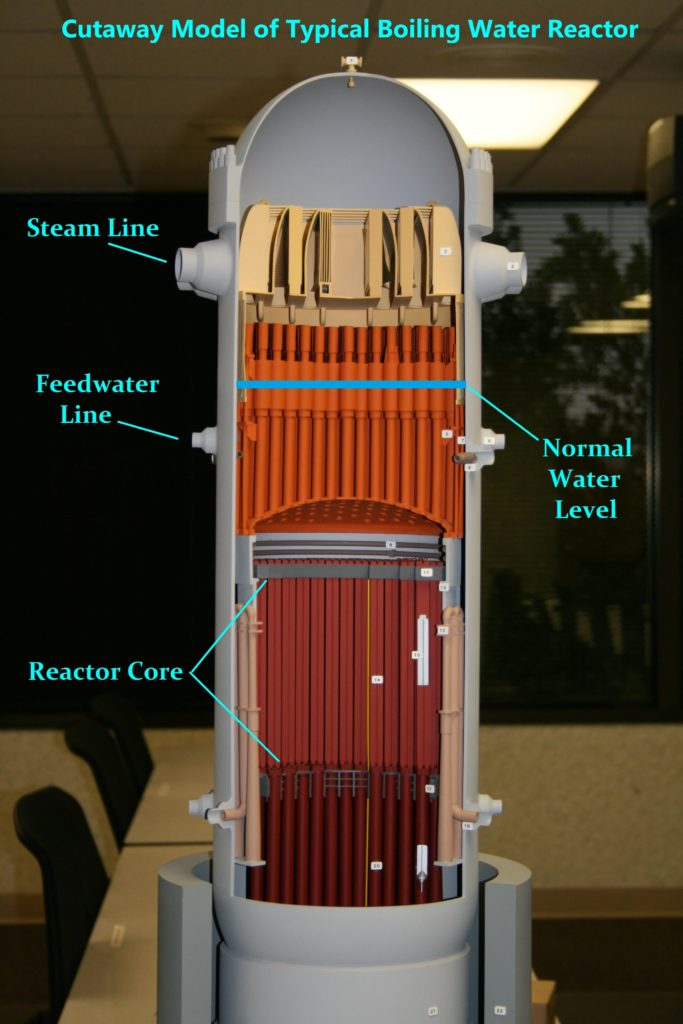 Fig. 1 BWR core (Source: NRC)